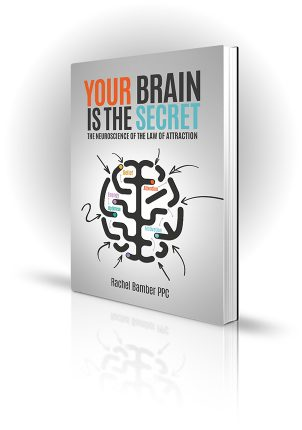 Your Brain Is The Secret - Rachel Bamber PPC - Abstract image of ways to different thoughts in the brain